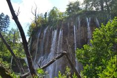 With huge passion to life: Plitvice Lakes