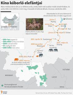 Kína kóborló elefántjai Map, Location Map, Maps