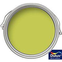 Dulux Feature Wall Luscious Lime - Matt Emulsion Paint - 1.25L