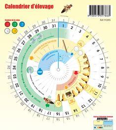 """Résultat de recherche d'images pour """"calendrier apicole rond disque"""""""