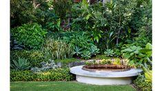 A Slice Of Primeval Paradise In Bronte Landscape Design, Garden Design, Outdoor Rooms, Garden Paths, Garden Inspiration, Coastal, The Outsiders, Paradise, Tropical