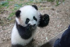 Hello out there! | Flickr - Photo Sharing!