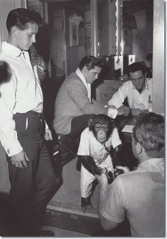 Elvis on set with his pet Chimp Scatter