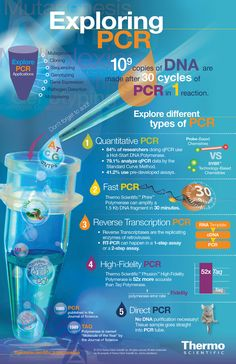 PCR Infographic