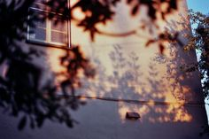 Best ideas for photography film camera nikon Bonheur Simple, Shoot Film, Film Aesthetic, Jolie Photo, Light And Shadow, Aesthetic Pictures, Scenery, Photos, In This Moment