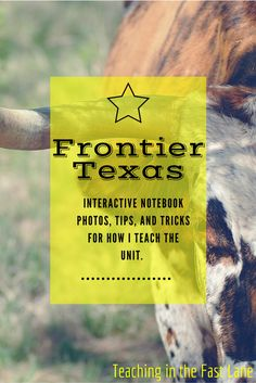 Let's talk about the era of Frontier Texas! This time period included cattle drives, frontier wars, and the creation of the railroad. Texas Teacher, Teacher Blogs, History Interactive Notebook, Interactive Notebooks, Cattle Drive, 4th Grade Reading, Texas History, Songs To Sing, Home Schooling