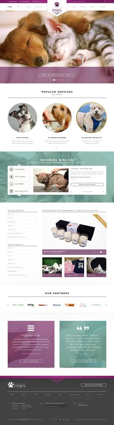 Designs | Pet Boutique & grooming Website Template update | WordPress theme design contest