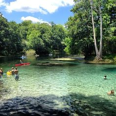 The 5 Best Swimming Holes In Florida Will Make Your Summer Epic Florida Vacation, Florida Travel, Vacation Places, Vacation Trips, Dream Vacations, Vacation Spots, Day Trips, Places To Travel, Florida Trips