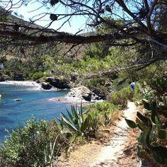 A wonderful weather for #hiking #incostabrava !  Un temps ideal per fer el #camideronda #aRoses ! #visitroses #gr92 #parcnatural #capdecreus #catalunyaexperience #empordaturisme
