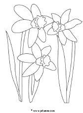 Bloemen downloads » Juf Sanne