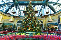 Bellagio's Conservatory & Botanical Gardens Presents a Merry Winter Wonderland | Travelivery Las Vegas