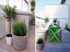 Small Garden Design, Home And Garden, Beautiful, Plants, House, Outdoor, Gardenias, Balcony Ideas, Decoration