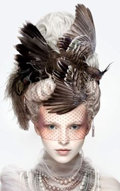 La Coiffure Oiseau by Alexia Sinclair