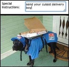 The Cutest Delivery Boy #lol