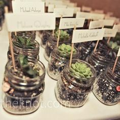 Succulent wedding favors and escort cards | Kristin Rogers Photography