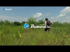 Mancing Bahagia Dengan Hook Daimaru || Micro Tanago Fishing - YouTube Fishing Videos, Youtube, Youtubers, Youtube Movies