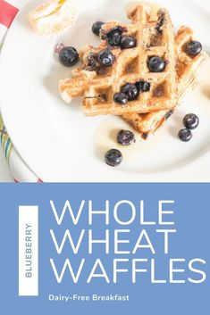 High protein and whole grain recipe. Oatmeal Toppings, Oatmeal Recipes, Best Oatmeal, Baked Oatmeal, Dairy Free Waffles, Blueberry Waffles, Dairy Free Breakfasts, Waffle Mix