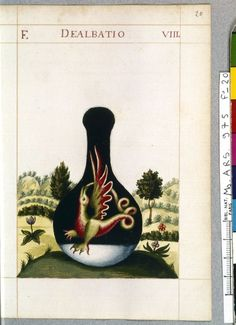 Dealbatio Capucins de la rue Saint-Honoré Folio 20, Planche 8