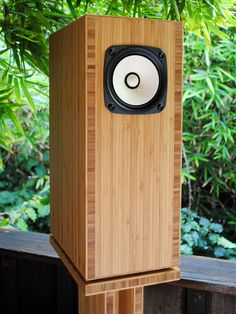 Custom bamboo plywood home theatre speakers