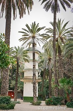 A tall dovecot in palm forest in Elche, Spain