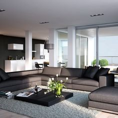 Modern Living Room with Dark Grey Sofa with Cushions and Lowset Coffee Table and Rug and Kitchen Corner in Apartment Design Ideas