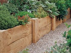 1000 images about garden ideas on pinterest raised beds for Wooden flower bed borders
