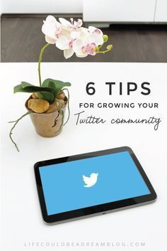 What a creative blog graphic! Make yours at Canva.com! *Tips for growing a large and loyal Twitter community.*