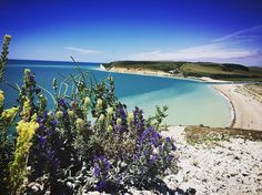 Finding this beach today was magical... #inspiring #photographer #enchanting #beach #paradise #heaven #beautifulday #beautifulweather #severnsisters #severnsisterscliffs #julia.the.photographer #blueskies #bluesea #whitecliffs #pebblebeach #mystical #perfect #britishsummertime #britishweather #sunnyday #happytimes #livingthedream #littlebutofparadice #beautiful #relaxing #thisisengland #tropical #glorious #montereylocals #pebblebeachlocals - posted by Julia.The.Photographer…