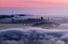 Amazing View On San Francisco By Peter Majkut