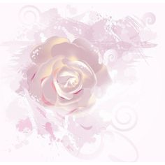 rose - Page 26 ❤ liked on Polyvore featuring backgrounds, effects, filler, design, floral, text, saying, quotes, phrase and texture
