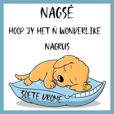 Good Night Greetings, Goeie Nag, Afrikaans Quotes, Dogs