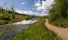 You can go fly fishing in Breckenridge on the Blue River #herefishy #outdoor #activities