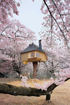 Small tea house in Japan