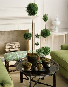 Topiaries | Sarah Barksdale Design