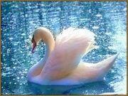 "Алмазная мозаика ""Лебедь"" 28 х 20 см, арт. N-335"