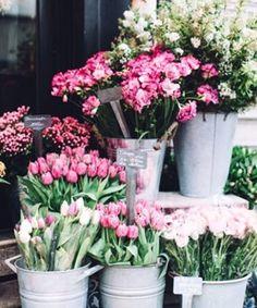 Flowers - Simple Pleasures, No. Amazing Flowers, Fresh Flowers, Beautiful Flowers, Simple Flowers, Pink Flowers, Flower Shop Design, Floral Design, Flower Aesthetic, Flower Market