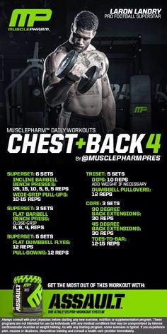 Chest & Back 4