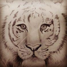 #Draw #Tiger