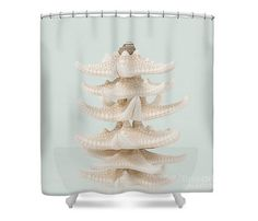Starfish Shower Curtain Nautical Bathroom Sea Star by LucidMood