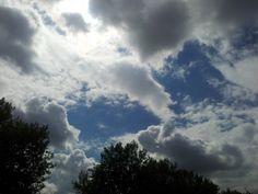 real dutch sky