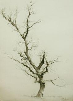Branches by Miguel Angel Oyarbide, via Behance