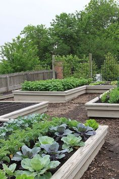 Raised Bed Kitchen Garden by thegardenbuzz, via Flickr