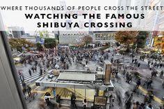 shibuya-crossing-tit