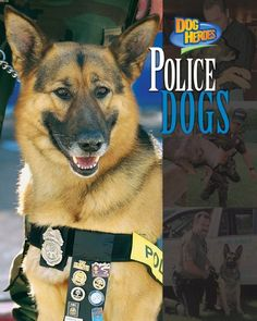 Police Dogs (Dog Heroes) by Frances E. Ruffin,http://www.amazon.com/dp/1597160148/ref=cm_sw_r_pi_dp_wlBqtb1BZVD6SZ3T
