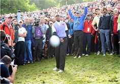 tiger..all in one,  hole in one