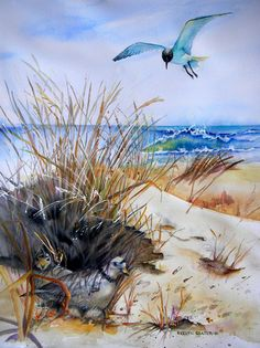 Piping Plovers Nestsite with marauding Tern flying overhead, Watercolor of Surf and Beach grasses, 16 x 20 on Arches 140lb CP paper.. Original Painting