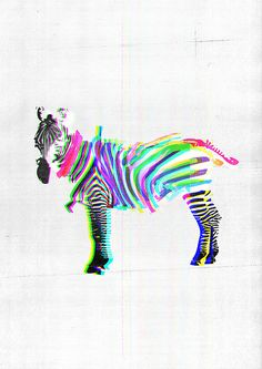 This Psychedelic zebra has a 3D feel, i like the way its really simple but the fluorescent colours play with your eyes