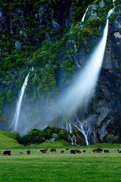 Wind Blown Falls, New Zealand