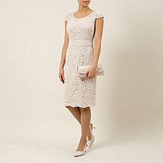 Mother of the Bride at Debenhams.com