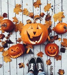 New Florapy Blog Post!!! Florapy's Favorite Fall Festivities! There's a lot on our to-do list find it all Linkin.bio. What's your favorite fall activity???🍁🧡 🍂 #losangeles #newyorkcity #chicago #houston #orlando #fallismyfavorite #fall #autumn #fallfashion #fallstyle  #halloween #pumpkin #october #pumpkinspice #trickortreat #instagood #jackolantern